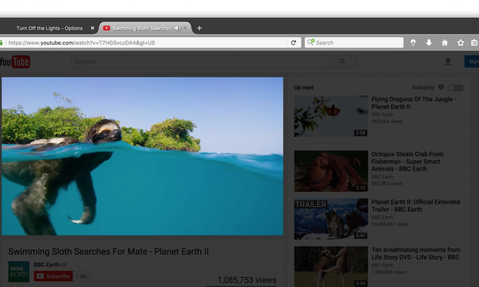 Firefox Dark Theme in toolbar