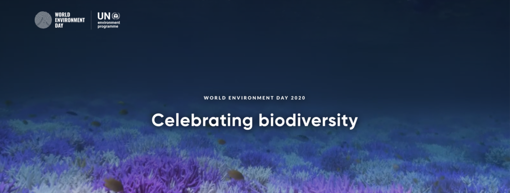 World Environment Day 2020 Celebrating biodiversity